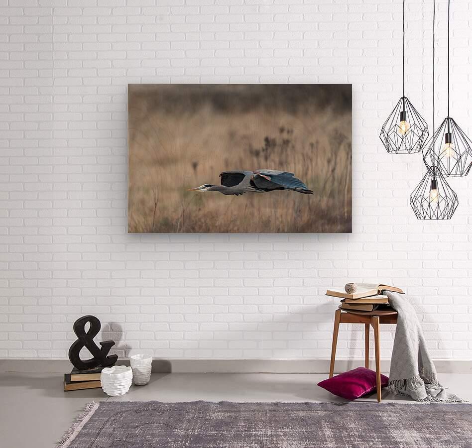 Wesley Allen Shaw 09384  Wood print