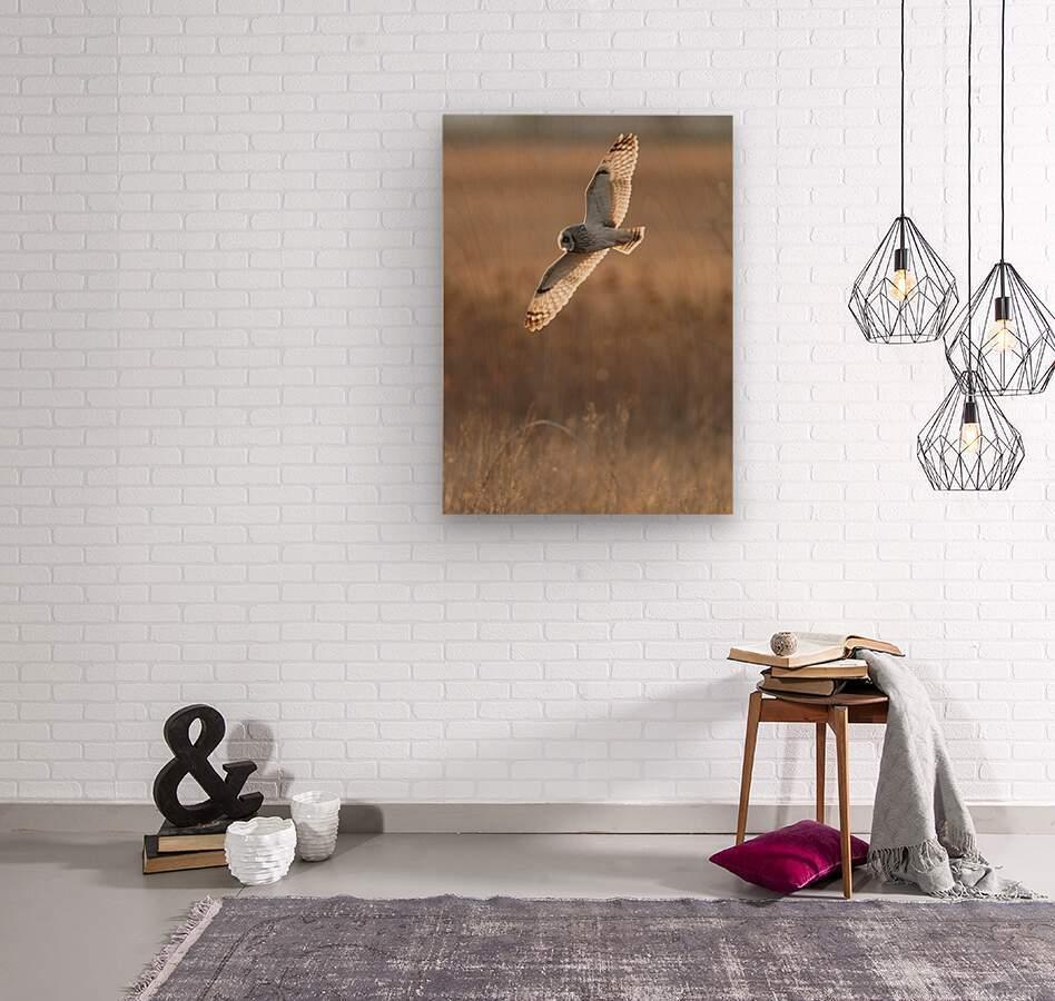 Wesley Allen Shaw 08970  Wood print