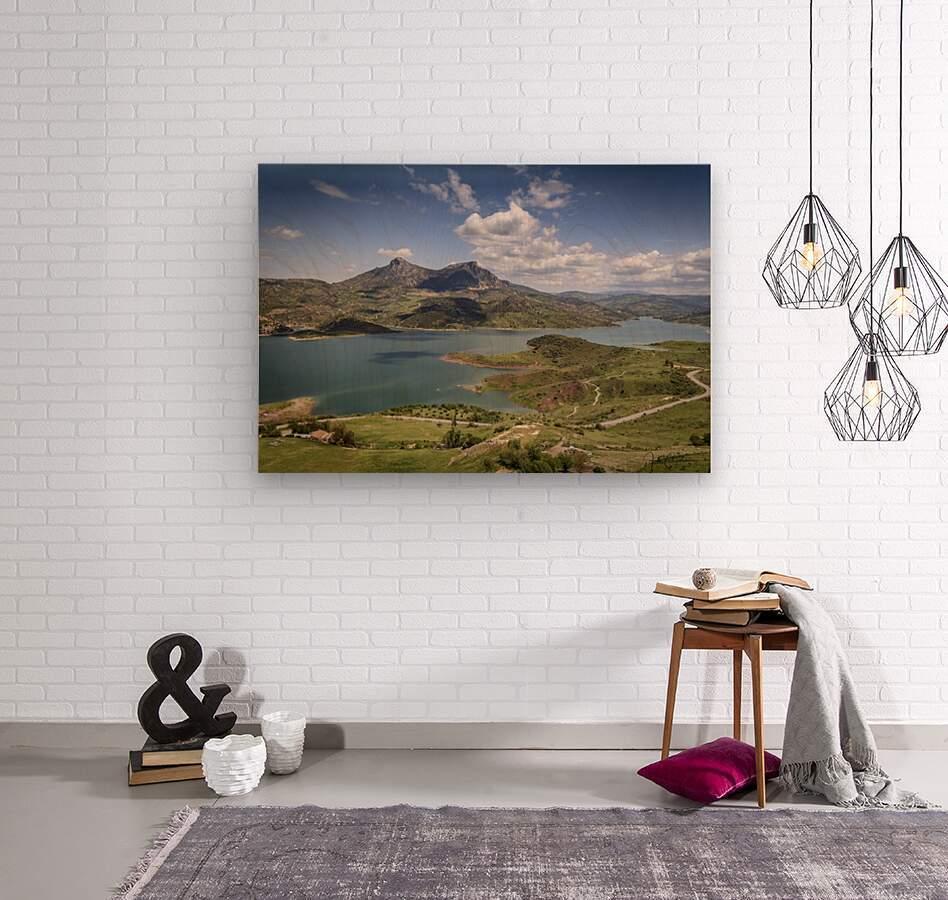 MG 6494  Wood print
