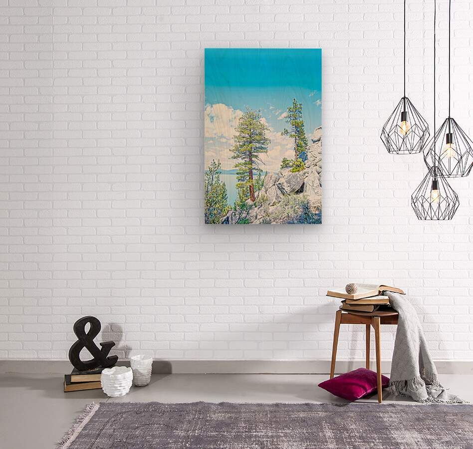 Top of the Mountain  Wood print