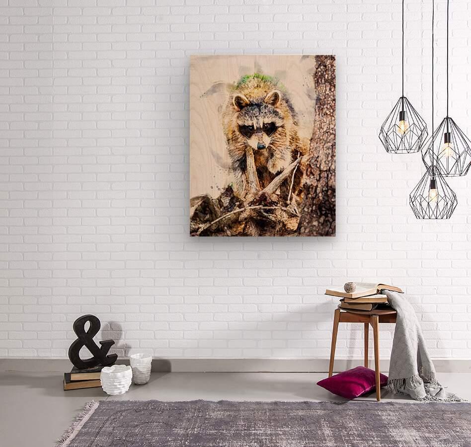Raccoon In The Woods  Wood print