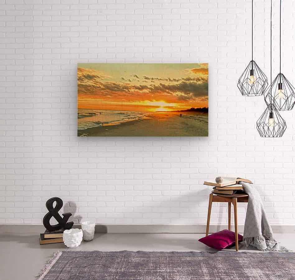 The Carolina Sunset  Wood print