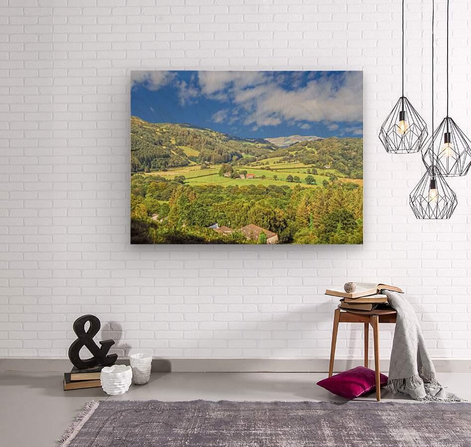 Beautiful Wales  Wood print