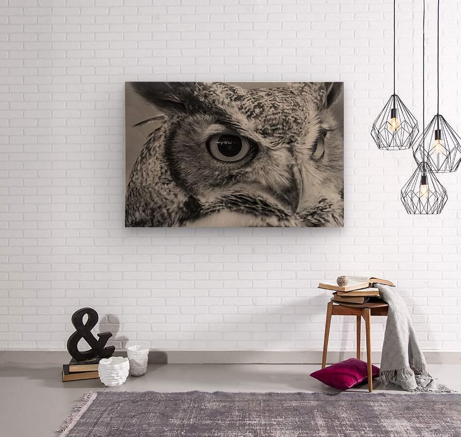 20181021 DSC 0228  2  1 2  Wood print