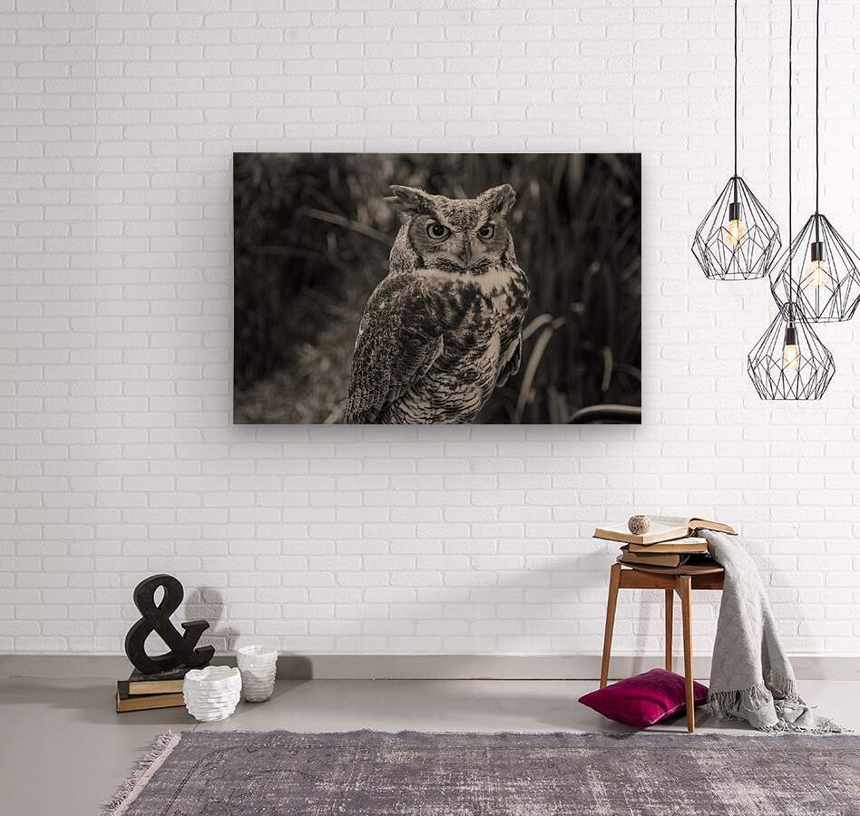20181021 DSC 0154  2  1 2  Wood print