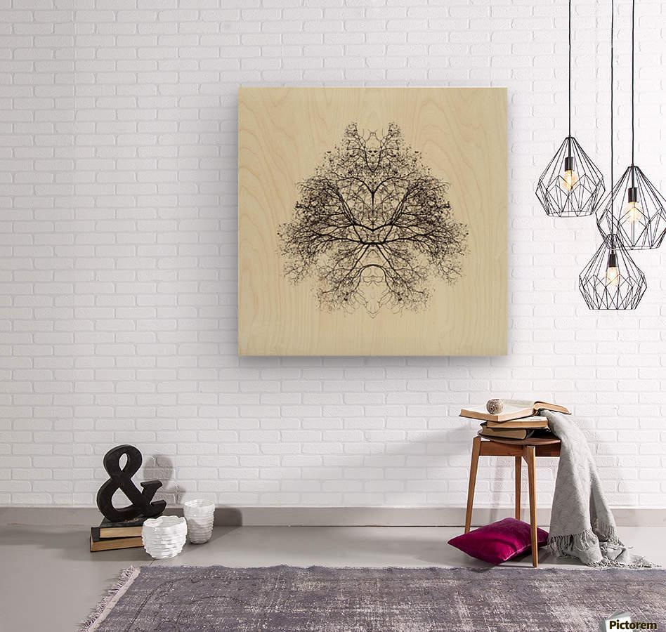 Rorschach Test by Nadav Jonas   Wood print