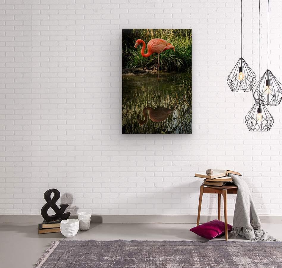 20201004 DSC 0252  Wood print