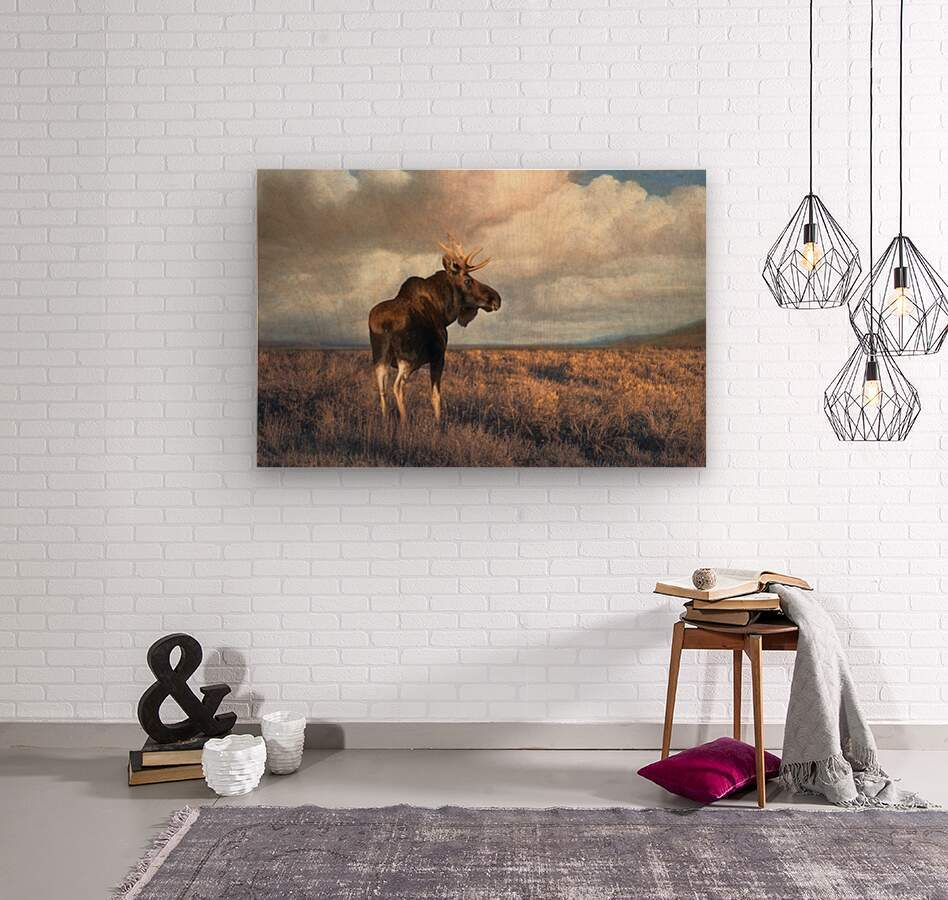 20201101  DSC4194 txtr  Wood print