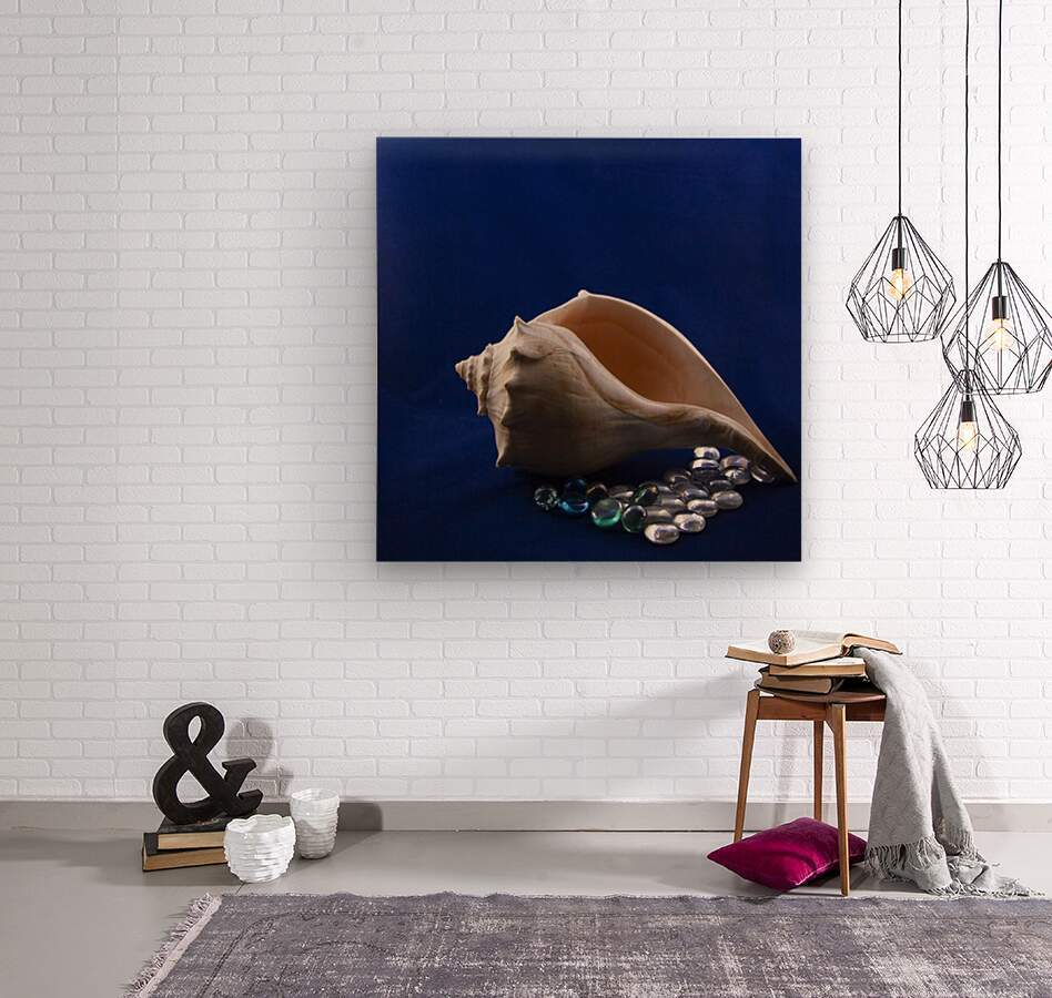 Single Conch Shell With Colored Glass   Wood print