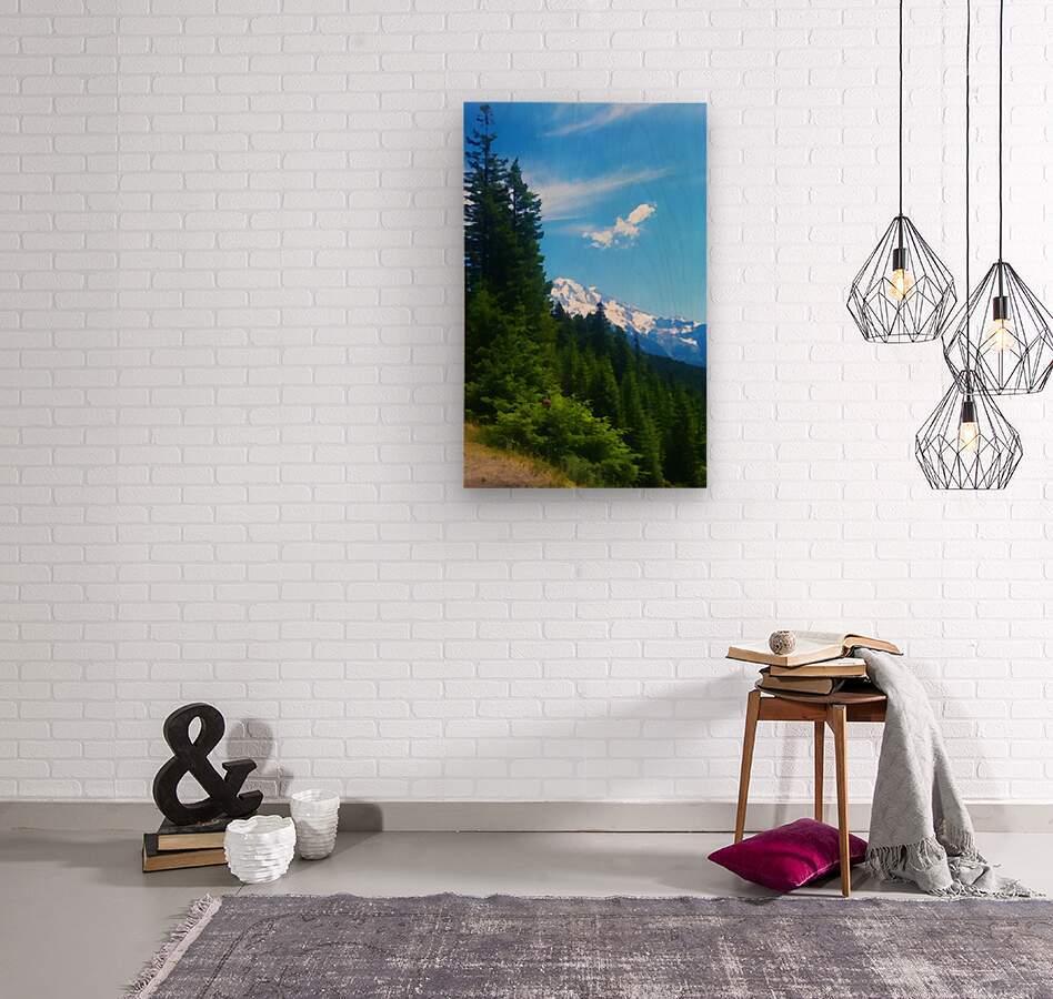 washington state mountains  Wood print