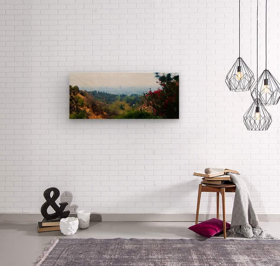 beauty of la  Wood print