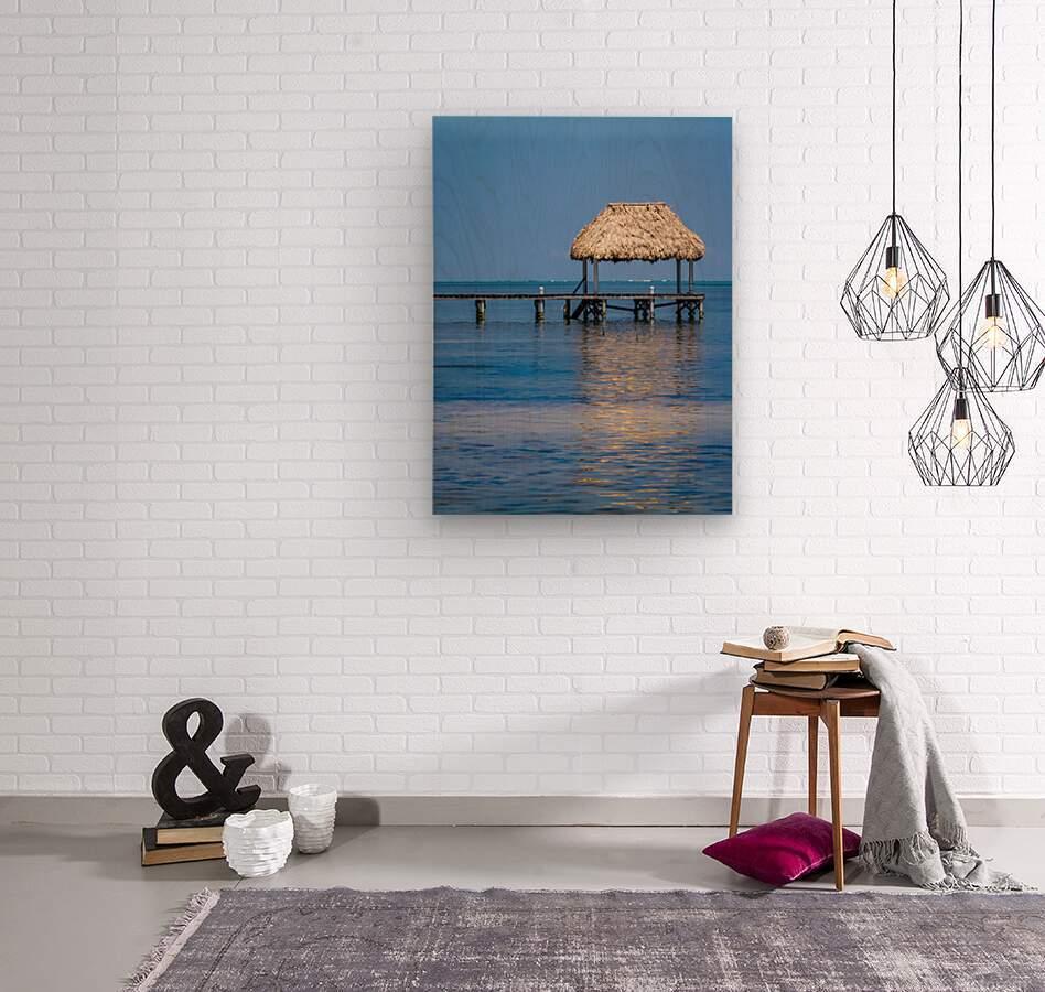 Ambergris Caye 2  Wood print