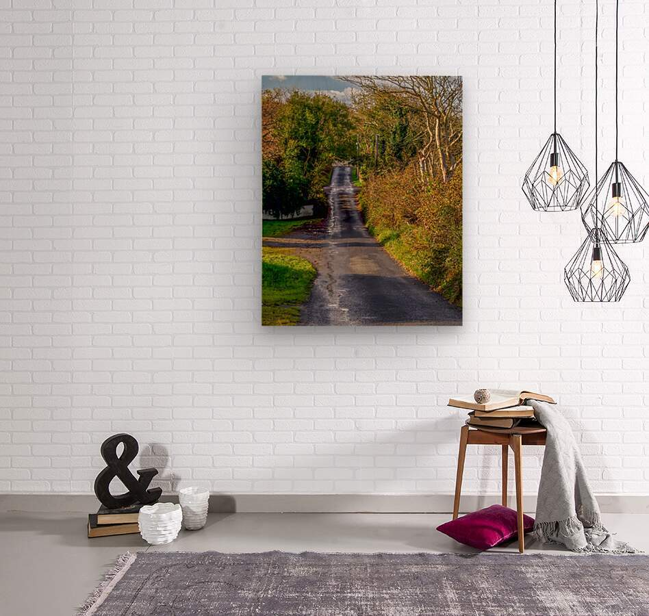 Donegal Byway  Wood print