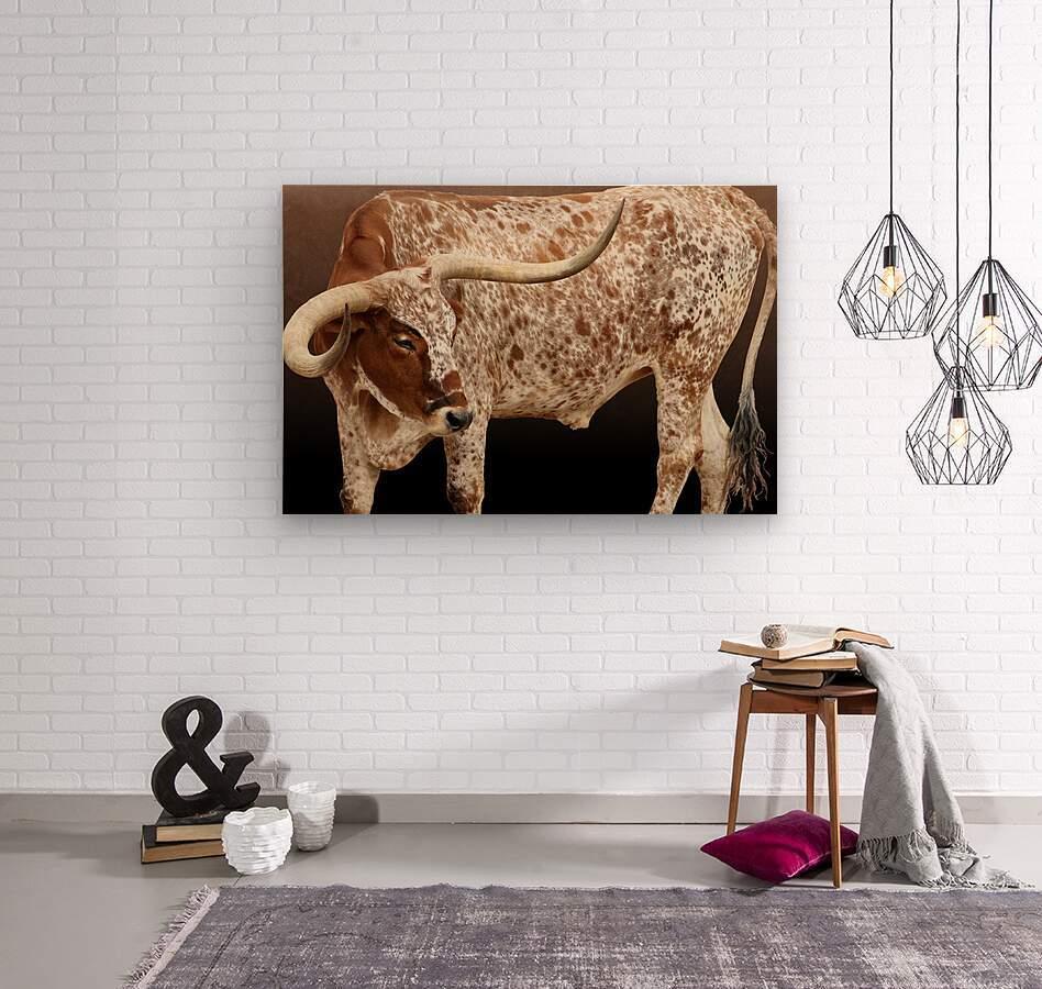 Longhorn Steer Profile 7x5  Wood print