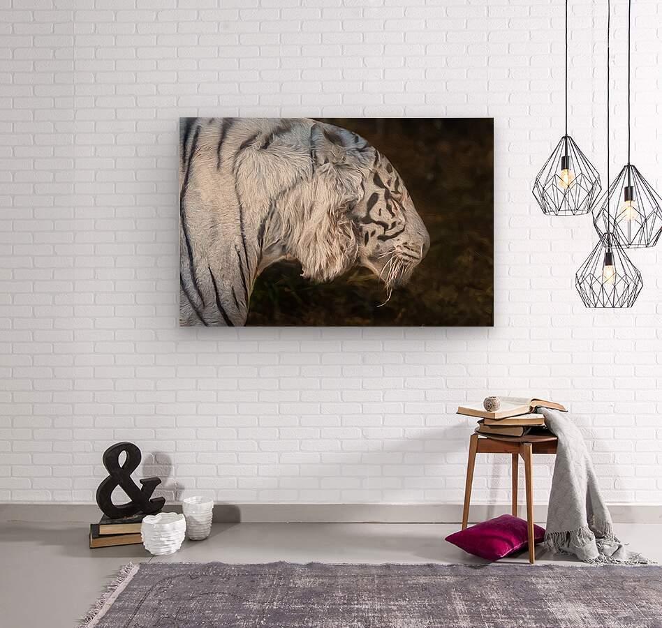 White Bengal Tiger 2  Wood print