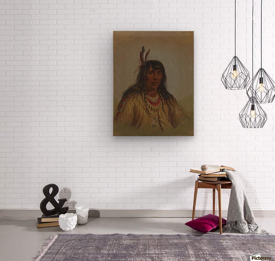 Bannock Indian  Wood print