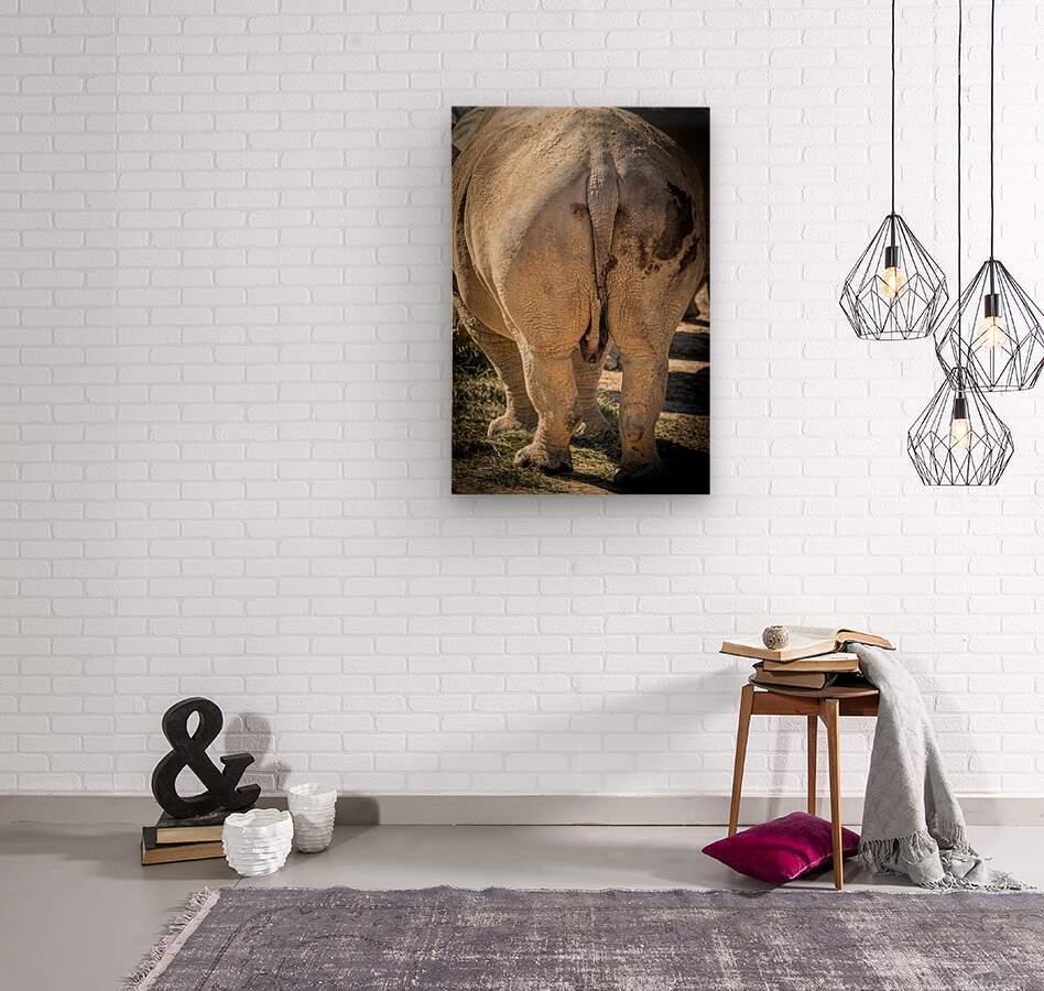 Rhinoceros 2  Wood print