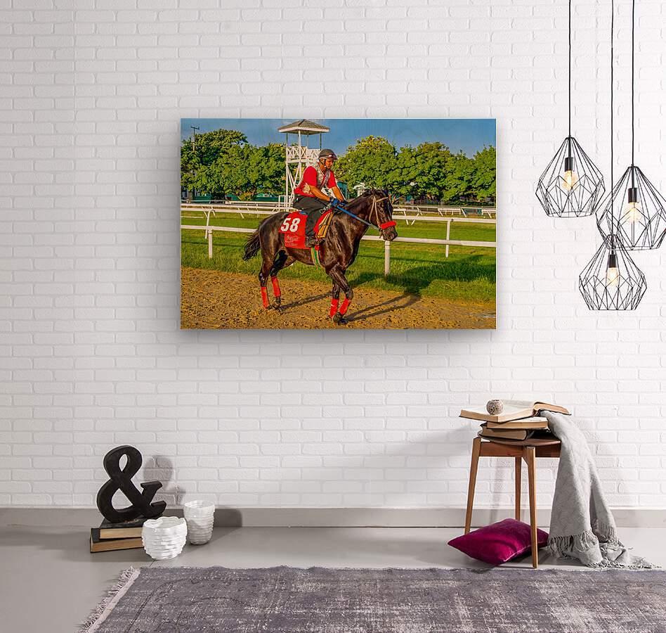 Racehorse01  Wood print