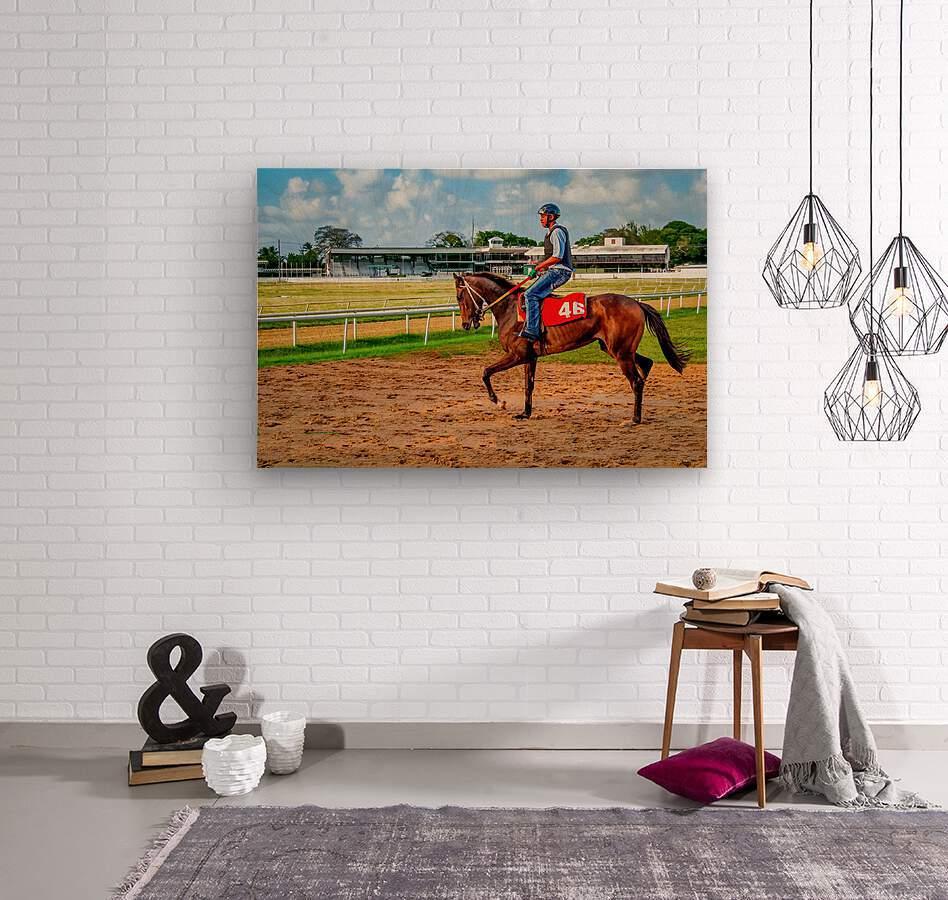 Racehorse04  Wood print