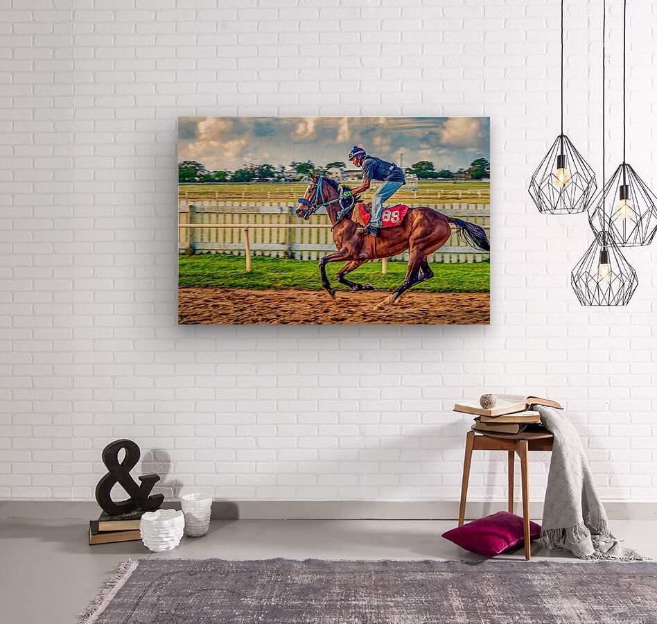 Racehorse09  Wood print