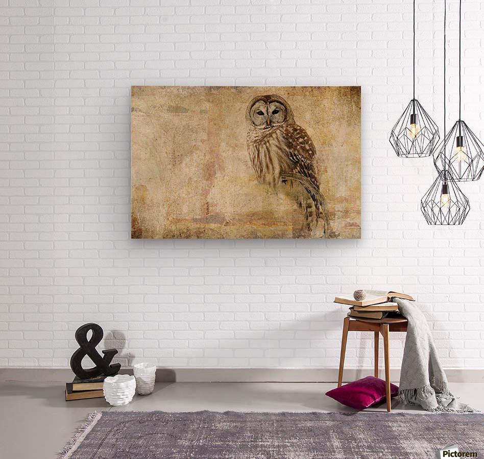 Strix Varia  Wood print
