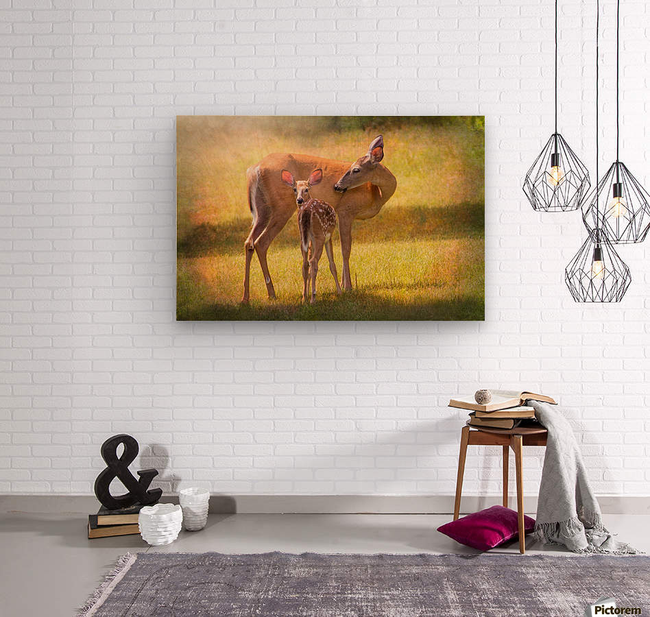 Doe with fawn looking back  Wood print