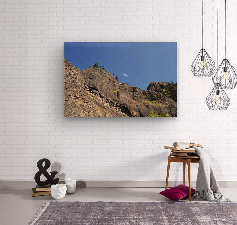 The Gorge Oregon  Wood print