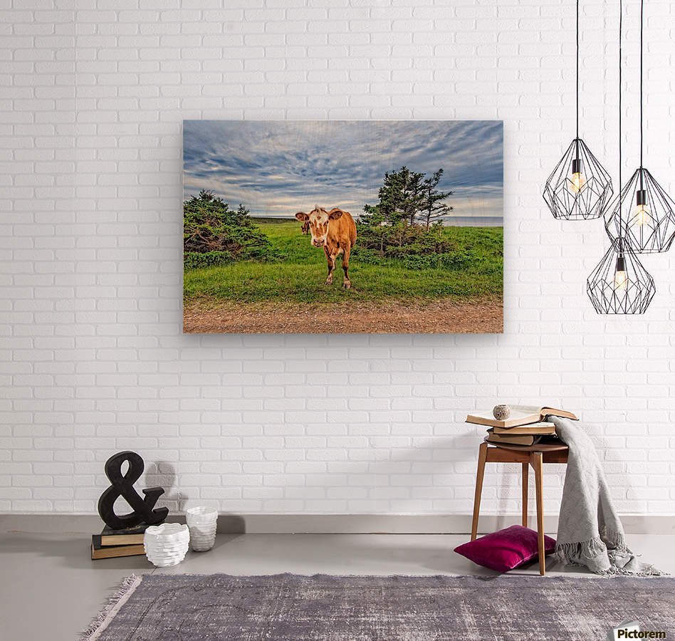 Moo  Wood print