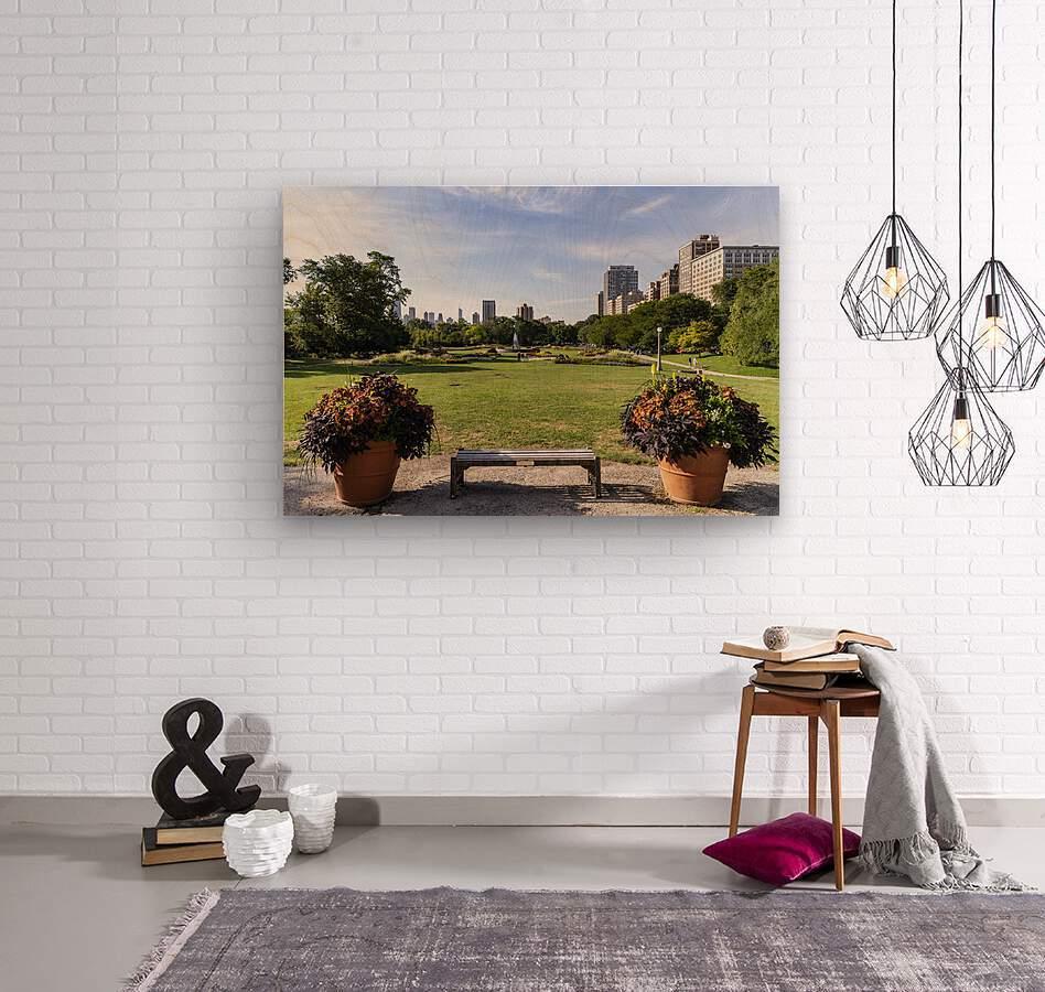 Look Through Lincoln Park  Wood print