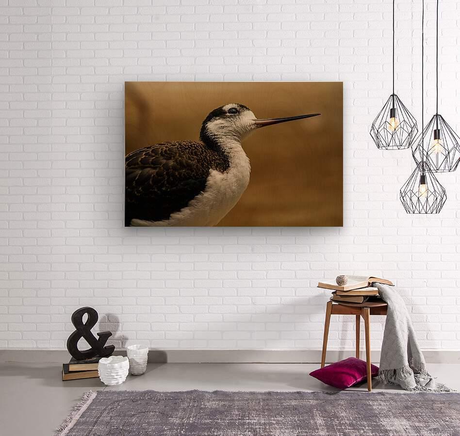 Shine Little Bird  Stilt   Wood print