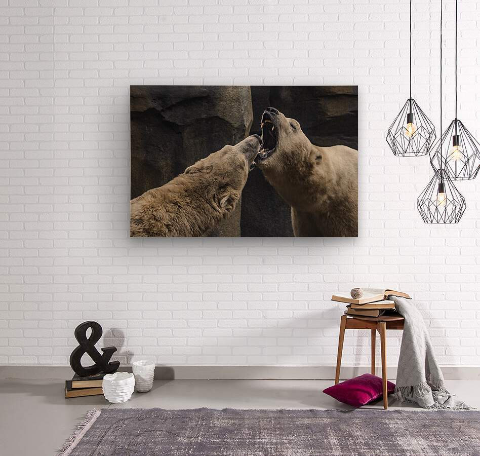 The Fight   Polar Bears   Wood print