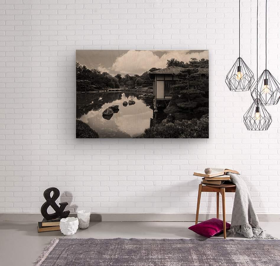 Black White Pond  Wood print