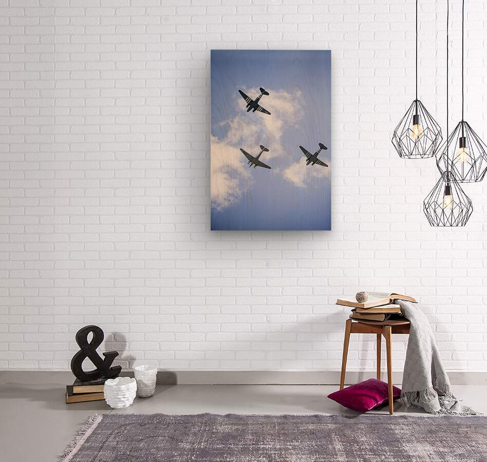 Fly By  Wood print