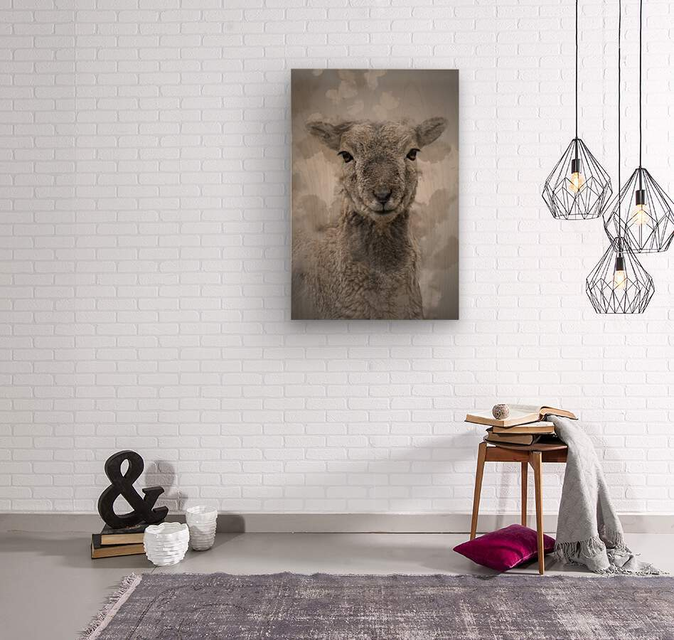 Mouflon  Wood print