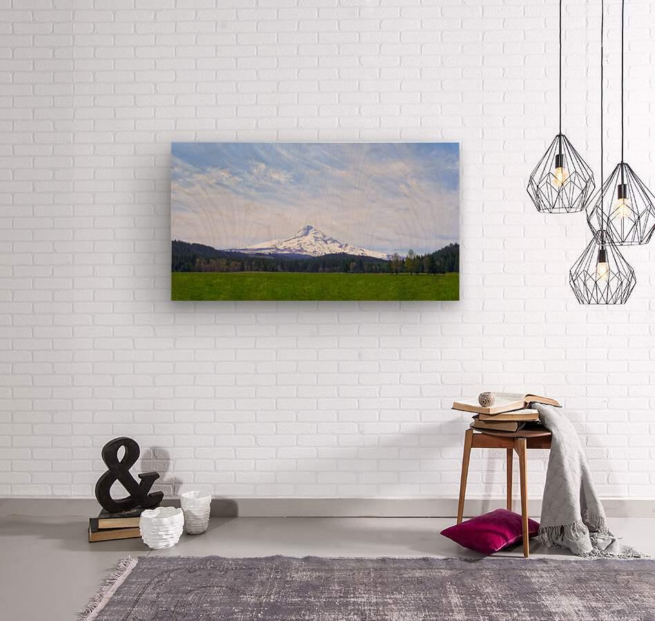 Majestic Mount Hood   Cascade Mountain Range Oregon  Wood print