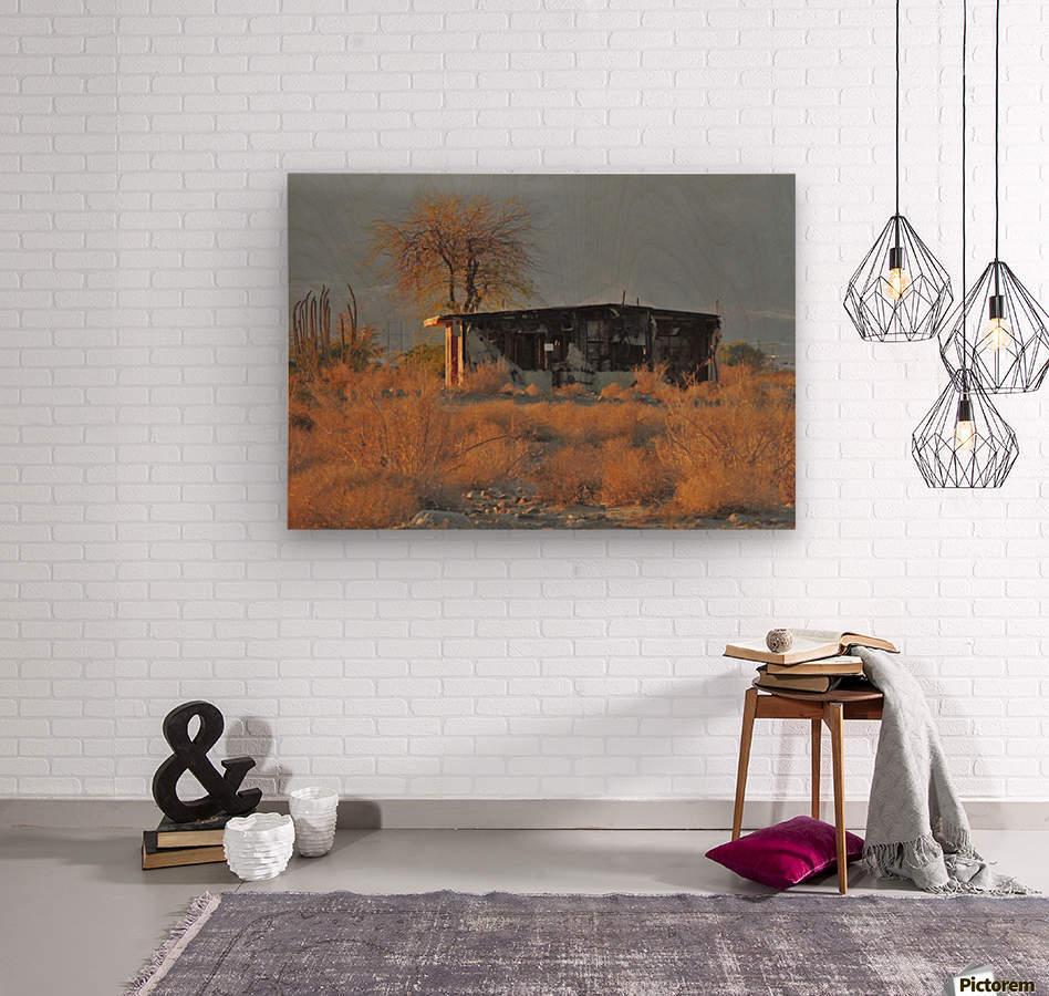 Abandoned in the Desert  Wood print