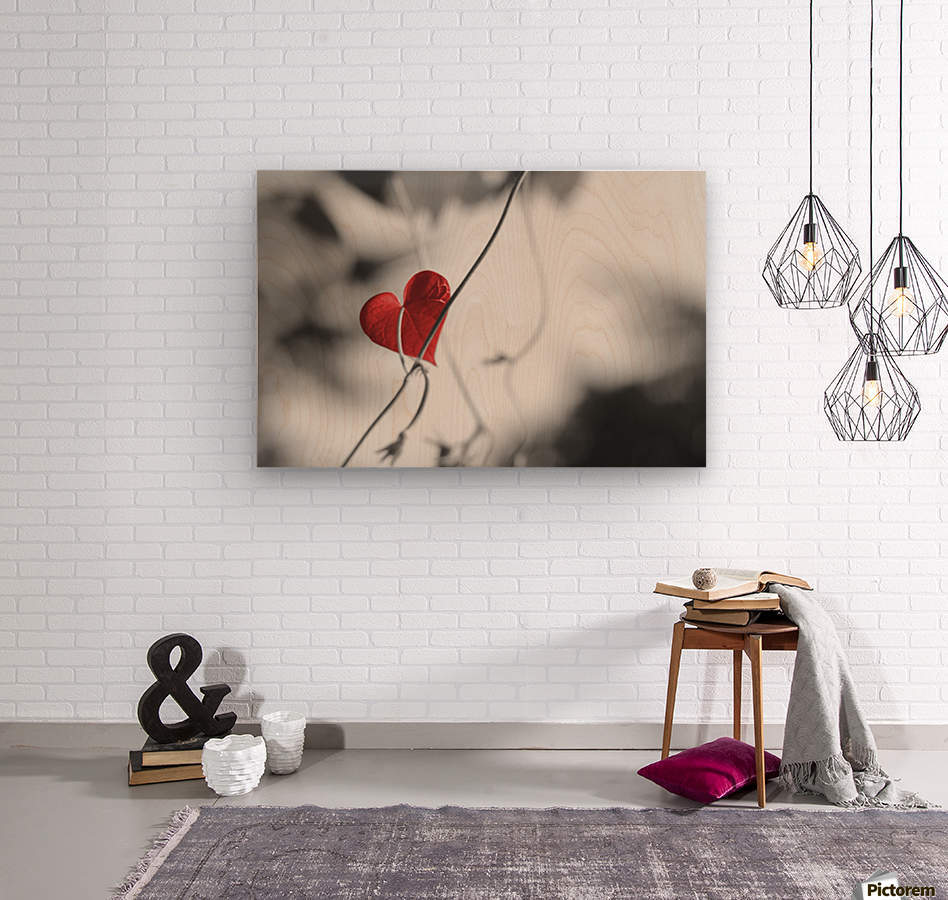 Red heart shaped leaf  Wood print