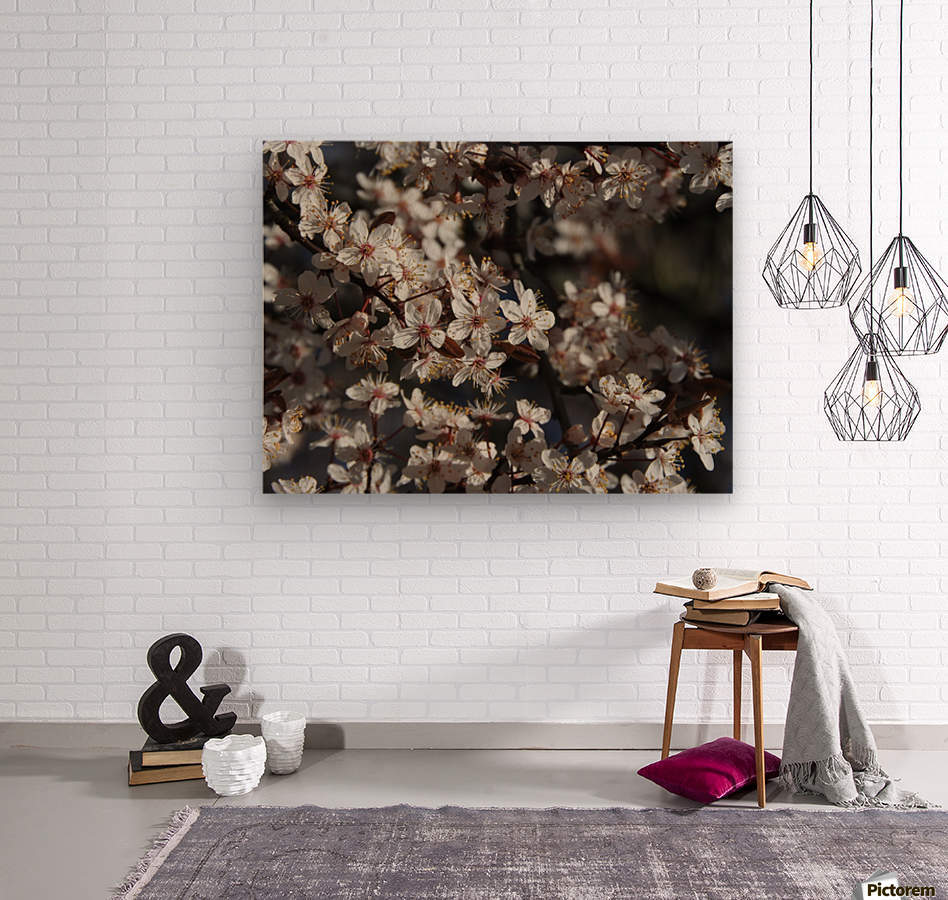 Lovely Blossoms  Wood print