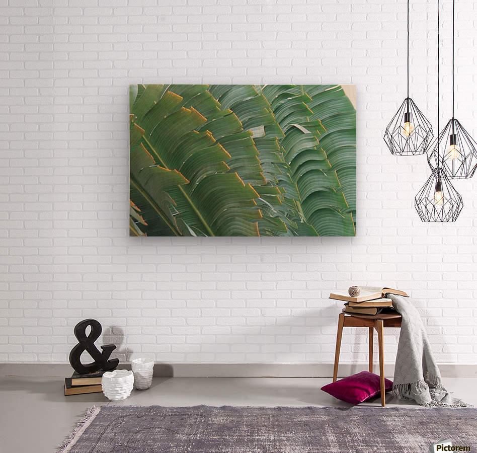 landscape_2_0093  Wood print