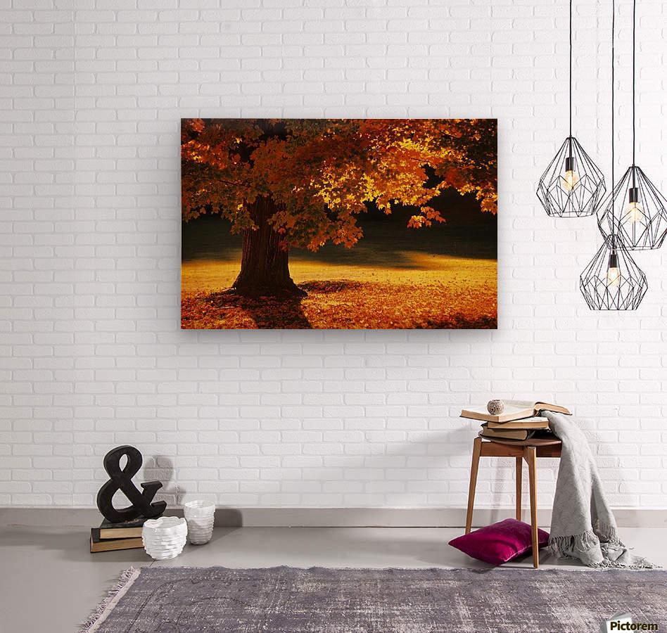 landscape_2_0386  Wood print