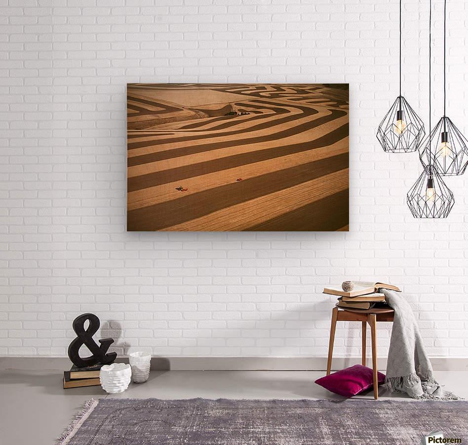 landscape_2_0594  Wood print