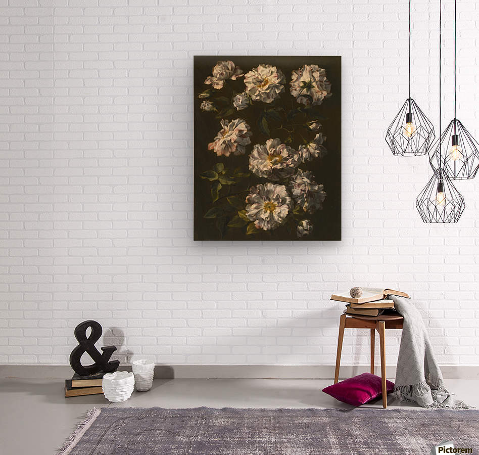 A study of striped white gallica roses  Wood print