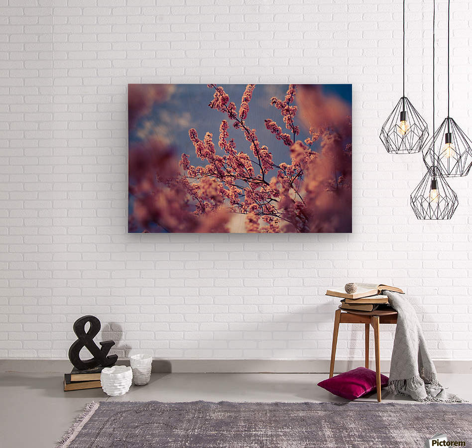 Spring cherry flowers  Wood print
