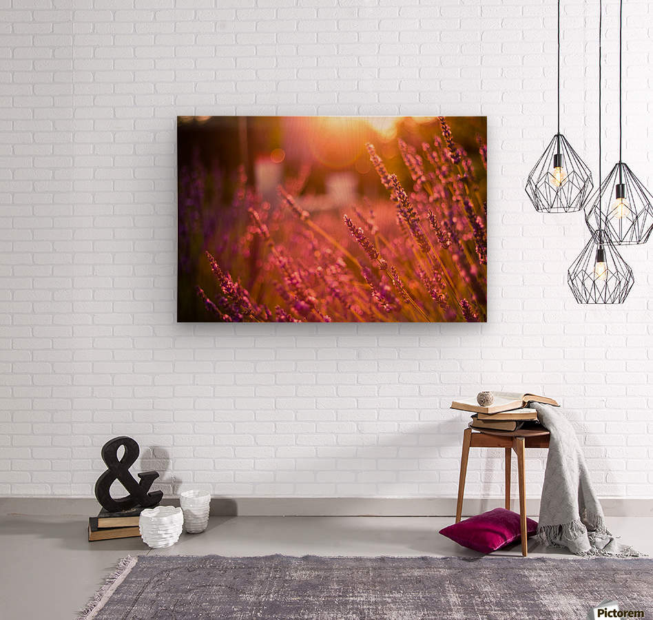 Sunset lavender flowers  Wood print