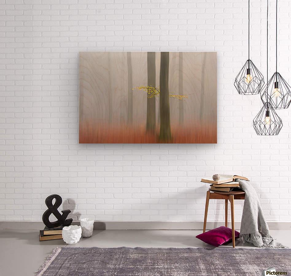 Autumnmorning  Wood print
