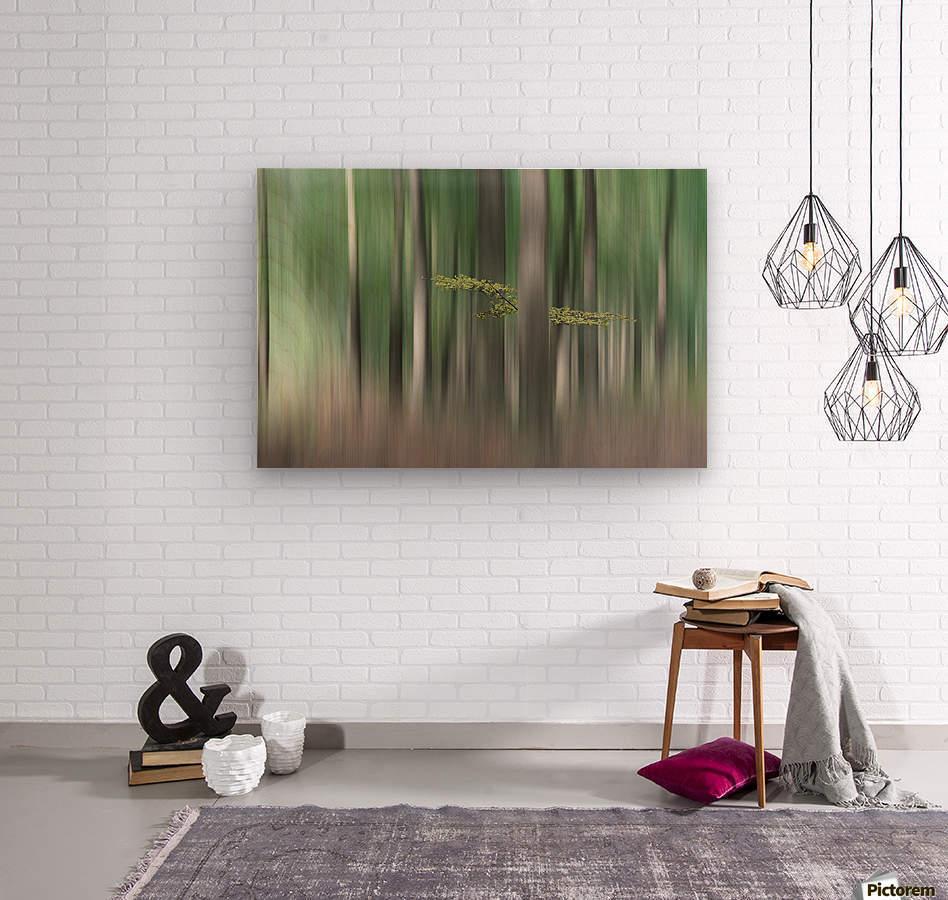 Summermorning  Wood print