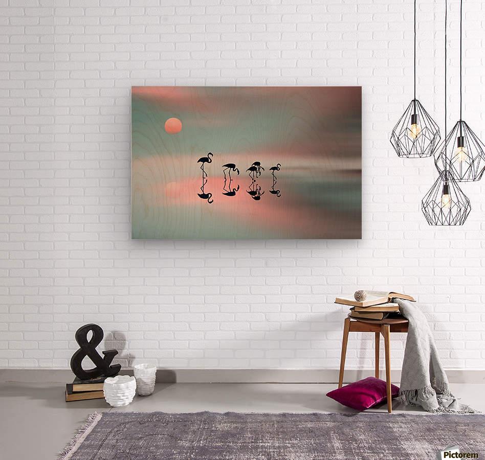 Family flamingos  Wood print