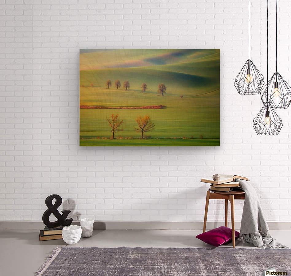 Fields  Wood print