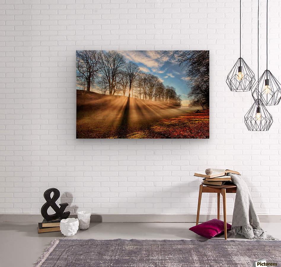 Mill of Shadows  Wood print
