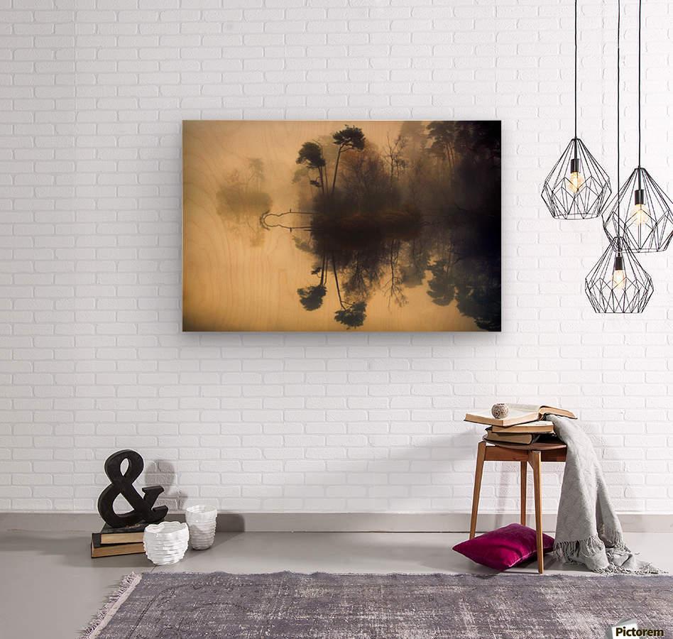 My place  Wood print